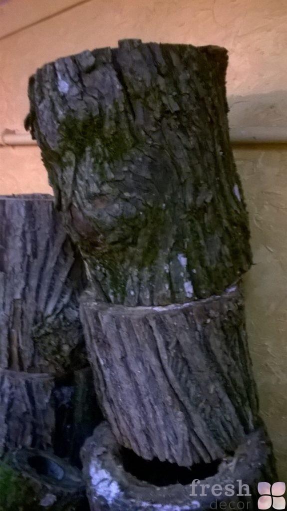 пни деревьев в аренду 3