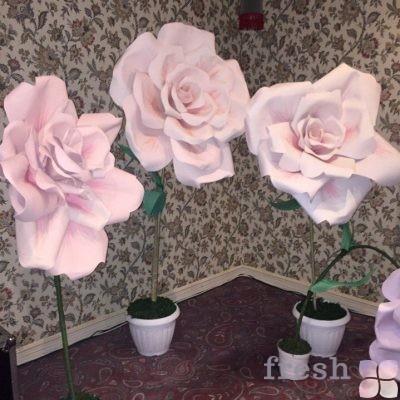 цветы розовые в аренду