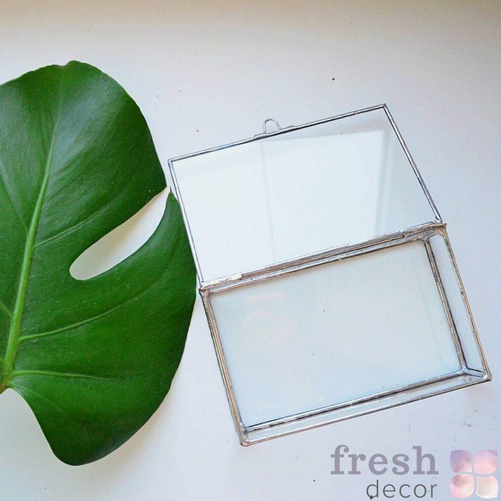 флорариум в аренду из стекла