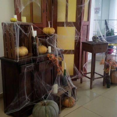 коричневая фотозона на Хелоуин в прокат