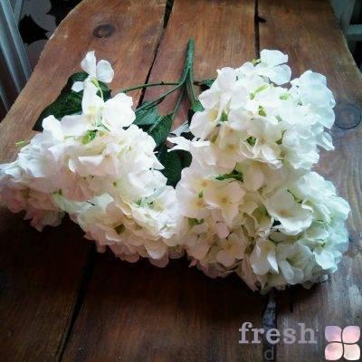 cvety iskustvennoj gortenzii v arendu