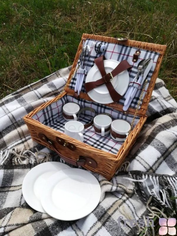 dlja piknika s pledom 1
