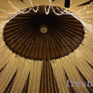 svetodiodnyj potolok zvezdnoe nebo v svadebnom shatre 2